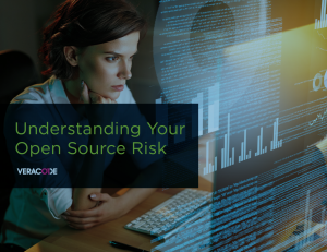 Veracode open source risk