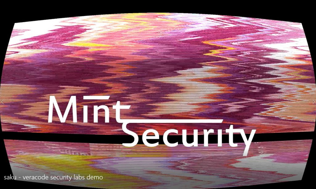 Mint Security Video